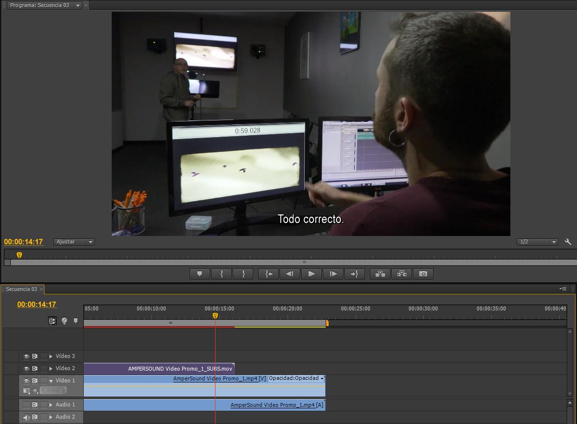 Captura de pantalla del proyecto en Adobe Premiere Pro.