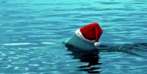 Una aleta de tiburón que asoma con un gorro de Papá Noel
